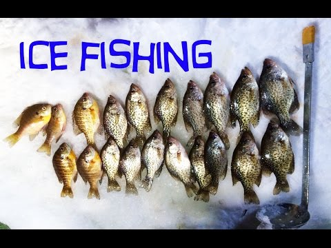 Ice Fishing - Crappies & Bluegill 2016 (GoPro Hero View)