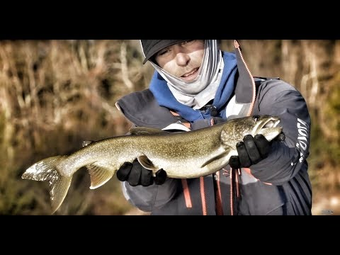 Mike Iaconelli's favorite lures for lake trout and bass in cold water conditions