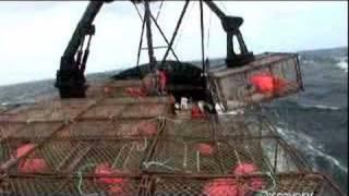 Tragedy at Sea | Deadliest Catch