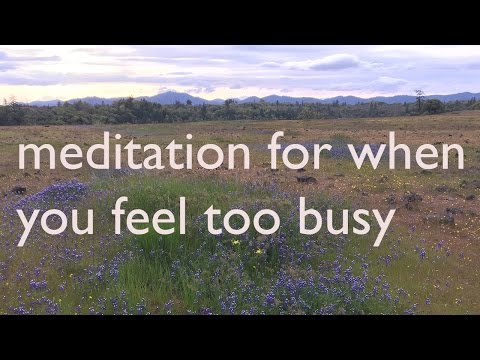 Meditation for When You Feel Too Busy