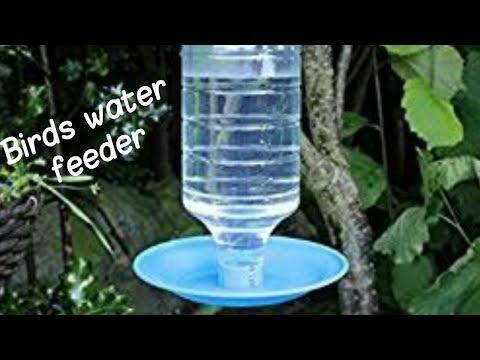 How to make bird water feeder
