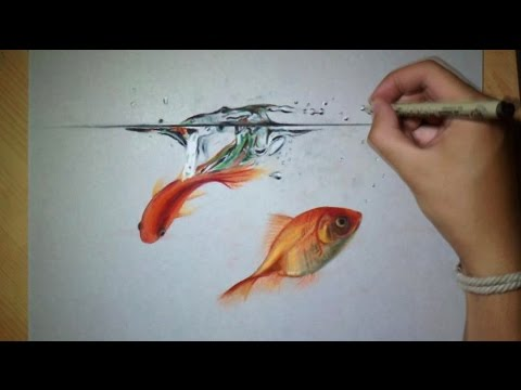 Fun drawing Goldfish in Water !