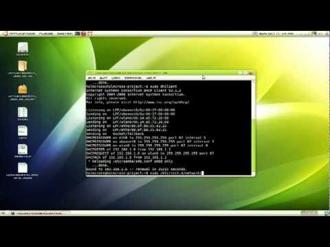 renew ip address on linux