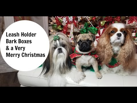 Leash Holder, December Bark boxes and MERRY CHRISTMAS FROM MY CREW