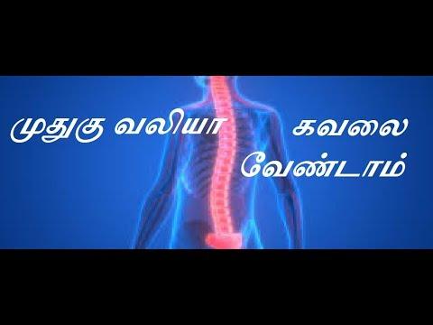 முதுகு வலியா கவலை வேண்டாம்:Do not worry spinal cord Natural Tamil Medicine