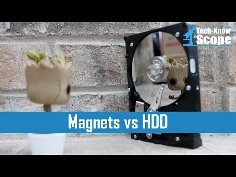▶️ Can a Magnet Damage a HDD?