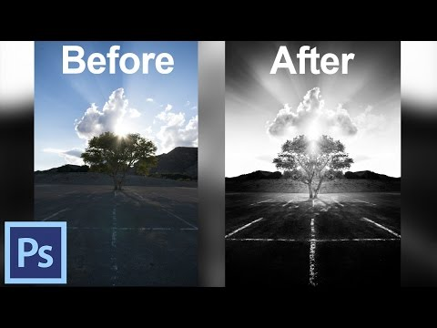 How to Use Photoshop to Create Black and White Images - Crowned Tree | Photoshop Tutorials