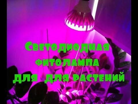Светодиодная фитолампа для  для растений