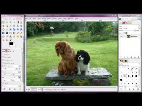 How To Crop and Resize an Image Using Free GIMP