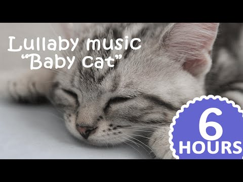 ❤ 6 Hours ❤ Lullaby music for babies: Baby cat - Baby songs to sleep