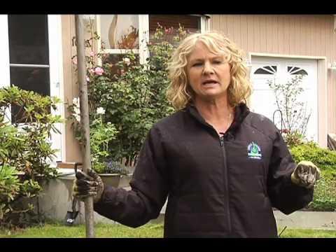 Description of All Cedar Grove Compost's Soil Products