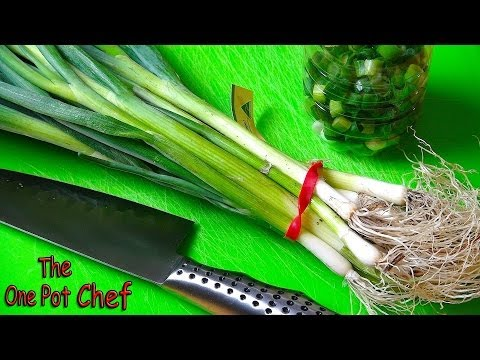 Quick Tips: Saving Leftover Spring Onions | One Pot Chef