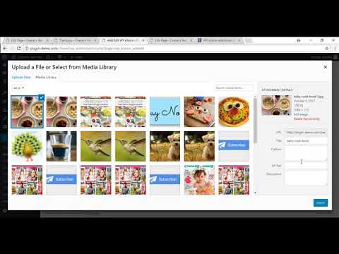 Creating a PayPal Buy Now Button Using WP eStore