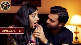 Surkh Chandni | Episode 17 | Top Pakistani Drama