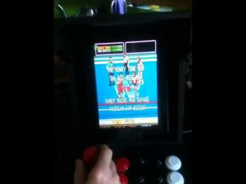 Wwf on iPhone/iPad with Mame emulator.