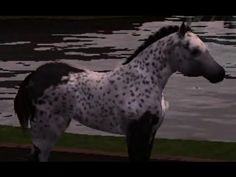 SIMS 3 Foals - How to Change Colour and Breed