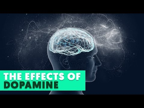 6 Effects Dopamine Has On The Body