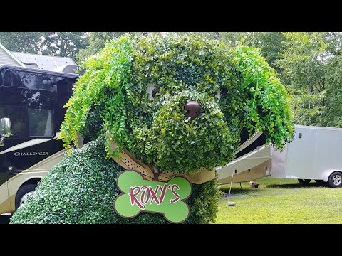How To Weld A Six Foot Tall Dog-The Shaggy Dog Topiary Build With BarbieTheWelder