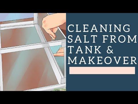 Removing Salt layer - My Old Aquarium Tank(Tamil)