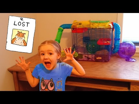 OUR HAMSTER ESCAPED!!! Rosie is Missing Somewhere in the House... Lost 🐹😱