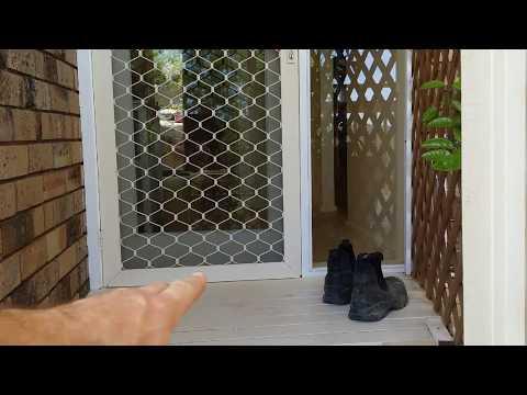 Front door fly screen