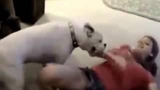 كلب يبي ينيك بنت