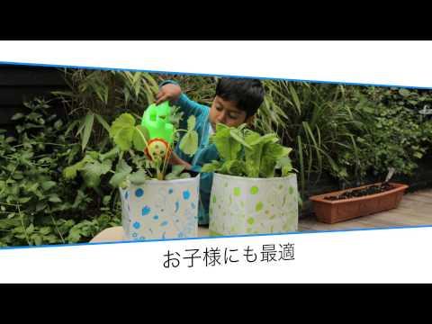 See It Gro Mini Grow Bags (Japanese version)