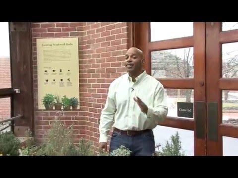William Moss Organic Gardening: Using Safer® Brand EndALL™ Pesticide
