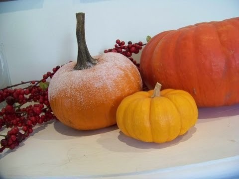 Chic on the Cheap: Sugar-Frosted Pumpkin