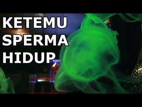 Beli Aqua di Malaysia ? - Vlog Malaysia day 1 - bkentVlog