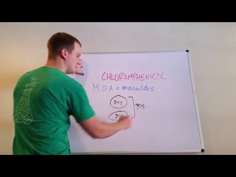 How Chlorampenicol Works