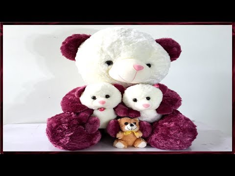 How To Protect Your Teddy Bears from Dust at Home || How To Display Teddy Bear At Home