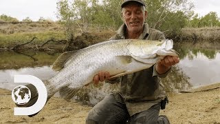 Jeremy Wade Finds Rare Fish That Were Affected By The Cane Toad Invasion   Jeremy Wade's Dark Waters