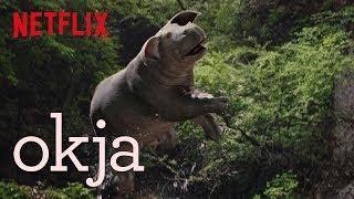 Okja | Featurette: Dolby Atmos | Netflix