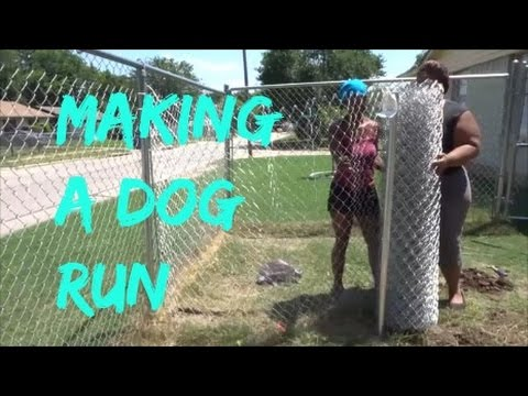 Building A Dog Run For These Crazy Dogs
