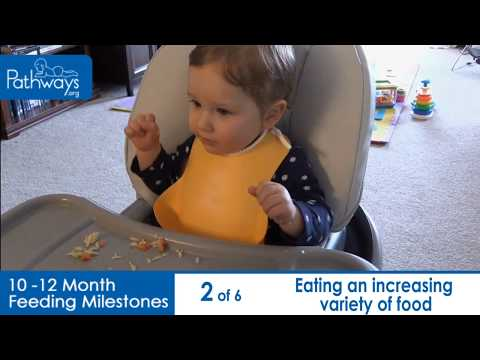 10 to 12 Month Baby Feeding Milestones to Look For