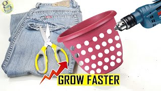 Do This to Grow Plant Faster 1000 times   Air Pruning DIY Experiment Hacks