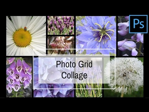 Create a Grid Collage in Photoshop