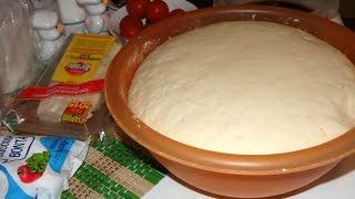 I segreti di un ottimo impasto per pizza pane o focaccia all