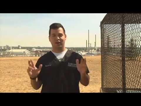 Volunteer Raising Money for New Dog Fence