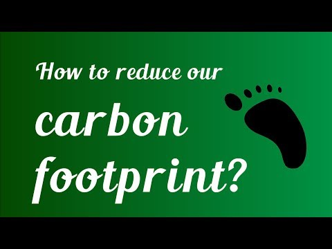 How can we reduce our carbon footprint?
