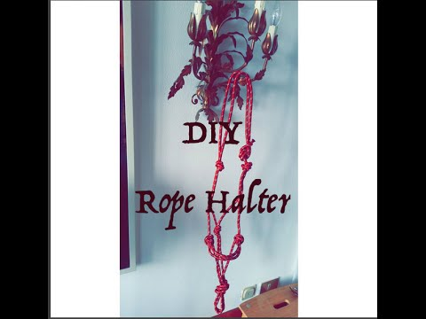 DIY ROPE HALTER - EASIEST TUTORIAL