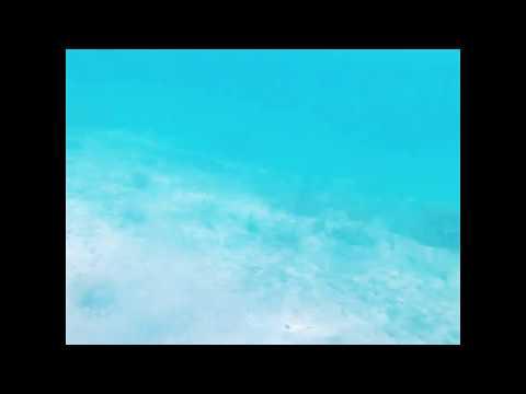 Snorkeling @Huma island