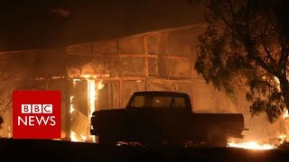 Santa Paula Fire: Thousands evacuated in southern California - BBC News