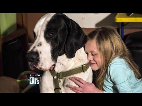 Service Dog Changed Bella's Life