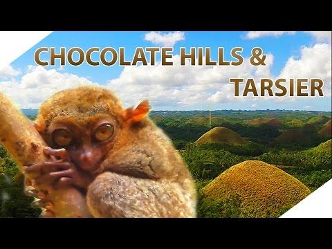 Chocolate Hills Bohol Philippines / Tarsier & Loboc River