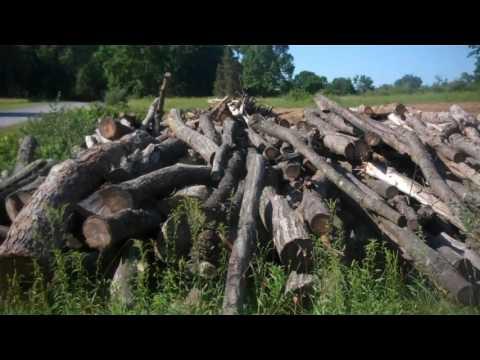 Salvage Dolls Gettysburg Battlefield Wood