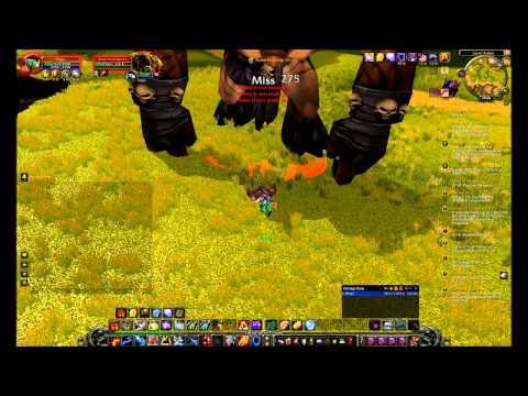 Lvl 70 shaman vs Durn the Hungerer