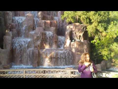 Wynn Las Vegas Waterfall and Swimming Pool 2017!