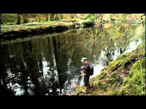 Haida Gwaii Winter Activities Video